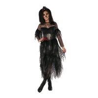 Lady Ghoul Adult Costume