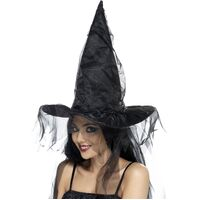 Black Witches Hat With Netting