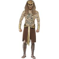 Zombie Pharaoh Adult Costume